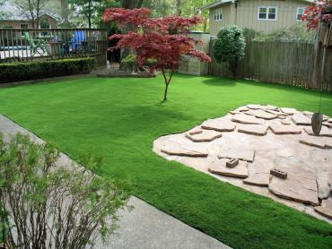 Synthetic Grass La Feria, Texas Landscape Photos, Backyard Makeover artificial grass