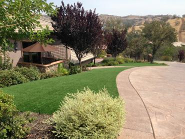 Artificial Grass Photos: Synthetic Grass West University Place, Texas Design Ideas, Small Front Yard Landscaping