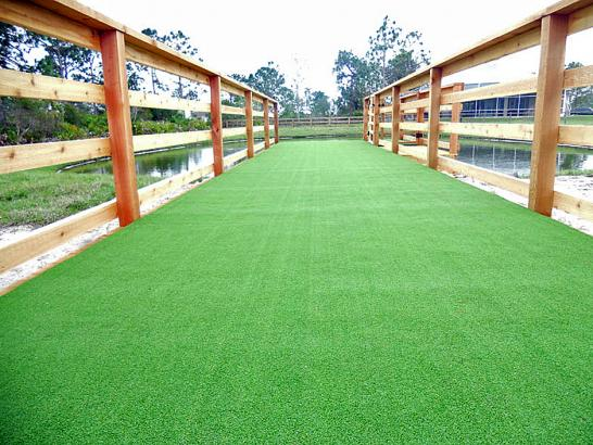 Artificial Grass Photos: Synthetic Lawn Bunker Hill Village, Texas Dog Hospital, Commercial Landscape