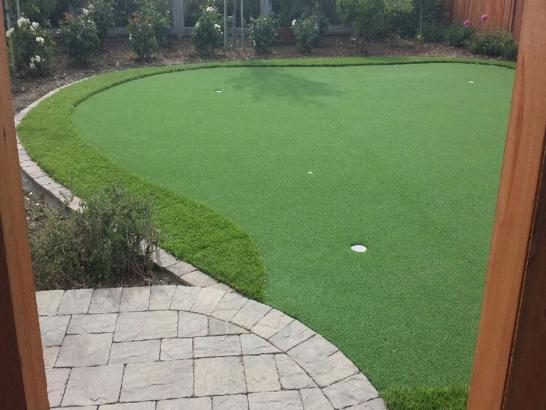 Artificial Grass Photos: Synthetic Lawn Laguna Vista, Texas Backyard Deck Ideas, Backyard Makeover