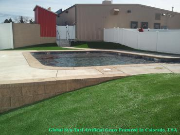 Synthetic Lawn McAllen, Texas Landscape Ideas, Kids Swimming Pools artificial grass