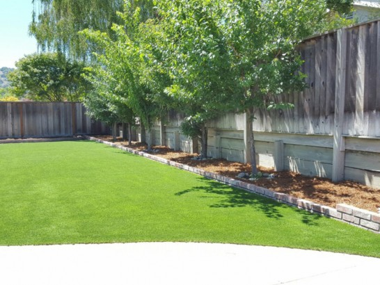 Synthetic Turf Ennis, Texas Paver Patio, Backyard Landscaping Ideas artificial grass