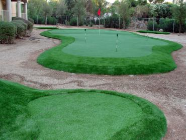 Synthetic Turf Lewisville, Texas Backyard Putting Green, Backyard Design artificial grass