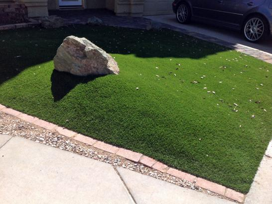 Artificial Grass Photos: Synthetic Turf Supplier Ballinger, Texas Backyard Playground