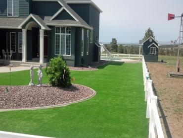 Artificial Grass Photos: Synthetic Turf Supplier Homestead Meadows South, Texas Landscaping, Front Yard