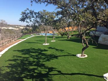 Artificial Grass Photos: Synthetic Turf Supplier Kennedale, Texas Backyard Putting Green, Natural Swimming Pools