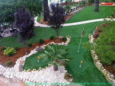 Turf Grass Houston, Texas Landscape Rock, Backyard Designs artificial grass