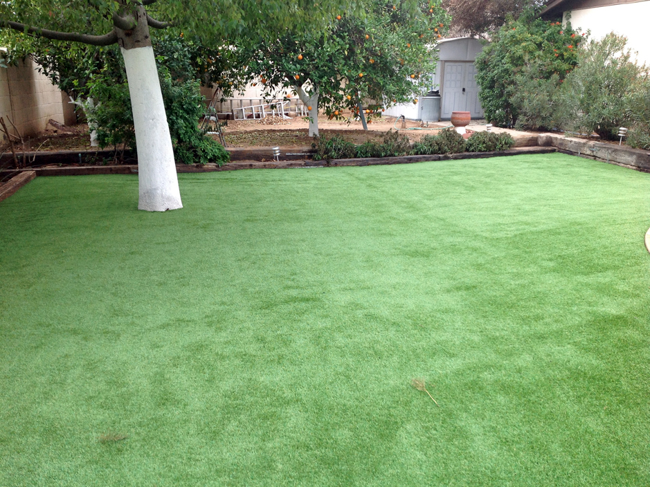 synthetic grass cost manor texas gardeners small backyard ideas - Synthetic Grass Cost