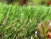 Synthetic Grass For Commercial Businesses