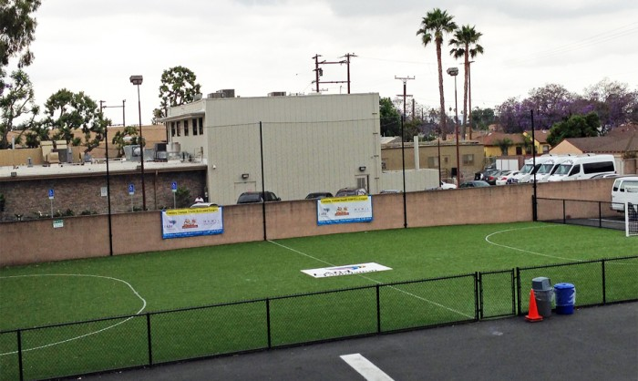 Sports Fields Synthetic Grass in Texas